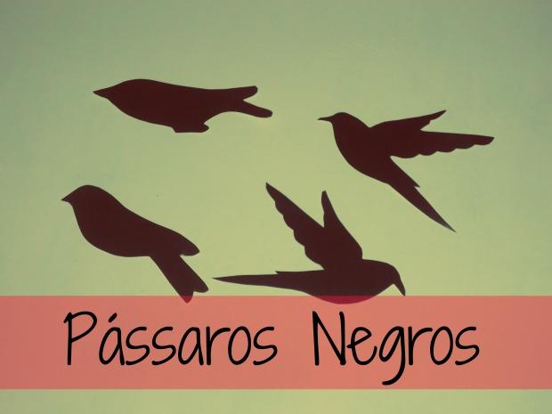 Pássaros Negros 11